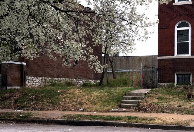 A Side Yard in the City: St. Louis, Vacant Land and Shrinking Cities in the News