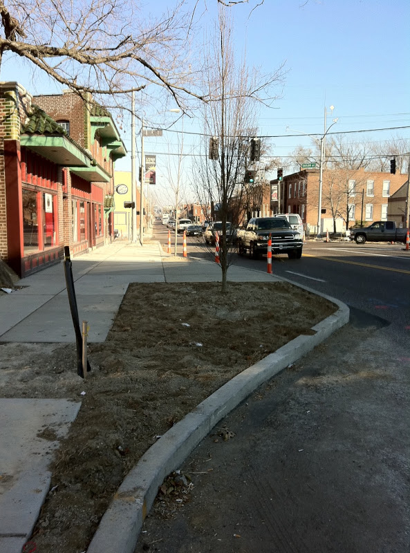 """KMOV investigates road diet in The Grove: """"What's being done to give the drivers a break?"""""""