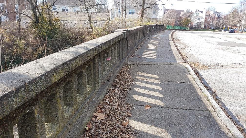 Were Our Ancestors Smart or Lucky? Hamilton Bridge Replacement