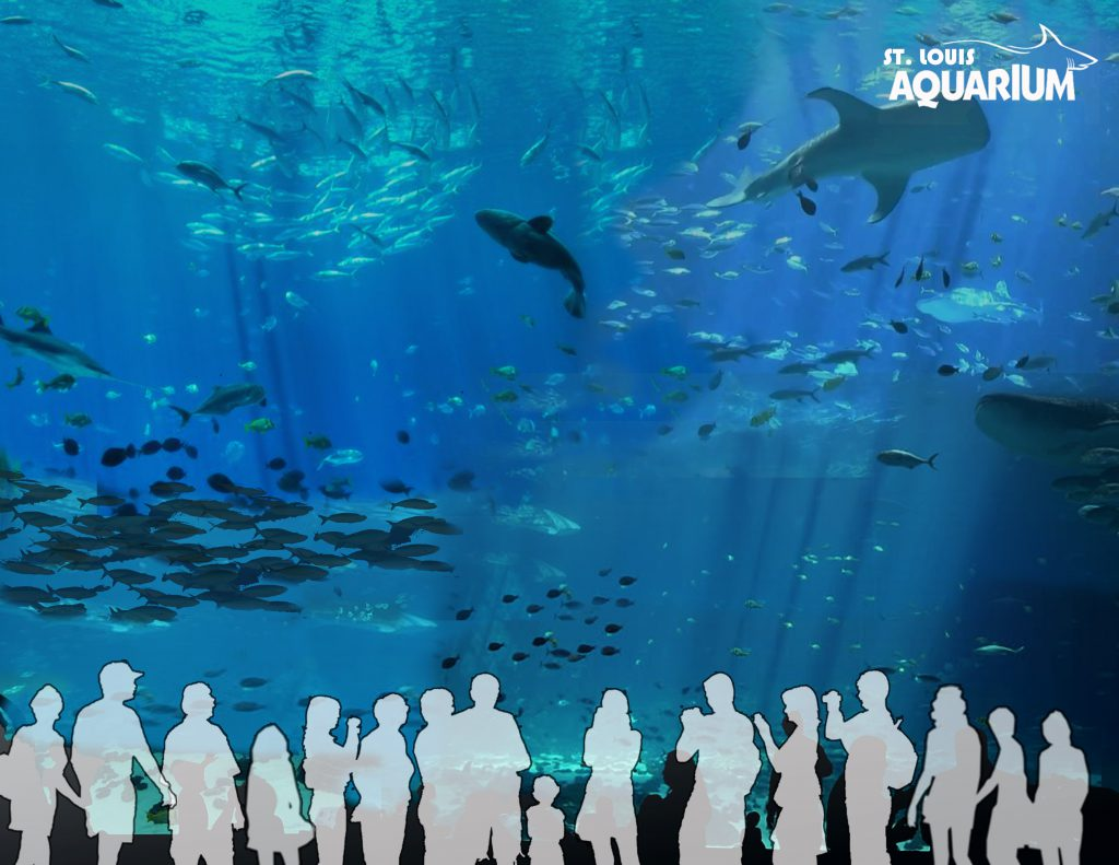 st louis aquarium union station opening